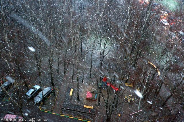 Первый снег. Ноябрь 2013