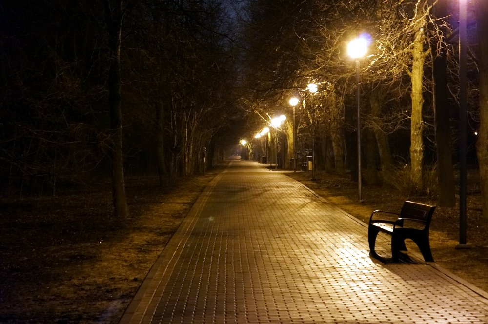 Аллея Тушинского парка